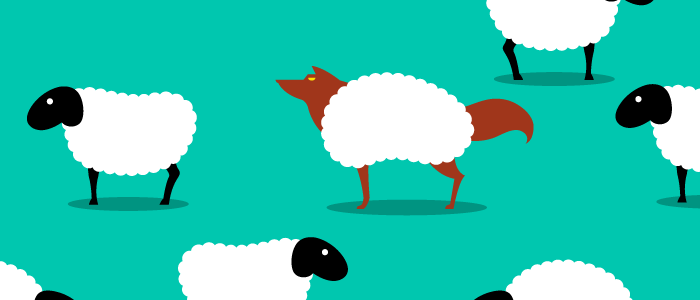 Flock of sheep with a fox